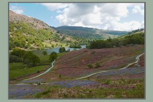 Rydal and Grasmere guided walks